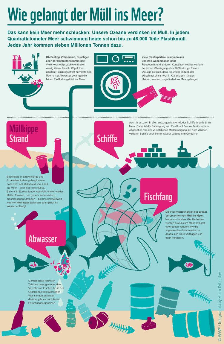 Bist Du ein umweltbewusster Surfer?